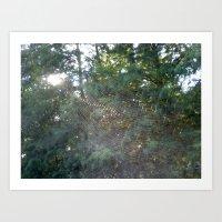 Spider Web 2 Art Print