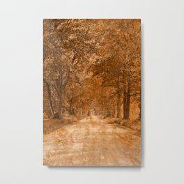 Acrylic Canopy Road - Vintage Nostalgia Metal Print