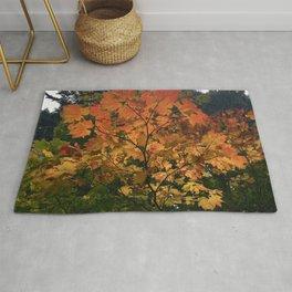Autumn Shade Rug