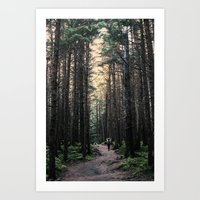 Winner Creek Trail - Girdwood, AK Art Print