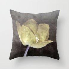 Set in Stone Throw Pillow