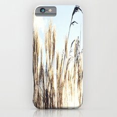sun setting on reeds Slim Case iPhone 6s