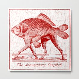 IF FISHES HAD LEGS (red) Metal Print