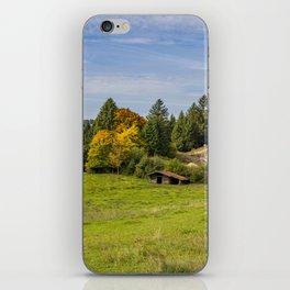 Alpine Landscape iPhone Skin