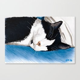 the snooze Canvas Print