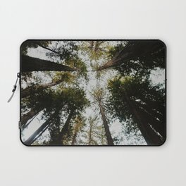 Muir Woods, California Laptop Sleeve