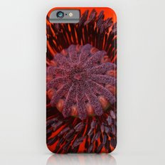 Poppy 3 iPhone 6s Slim Case
