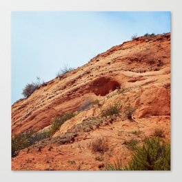 Sandy Knoll Canvas Print