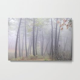 """Deep forest"". Into the foggy woods.... Metal Print"