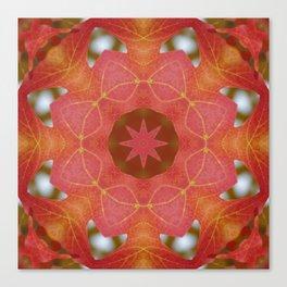 Sugar maple mandala 2 Canvas Print