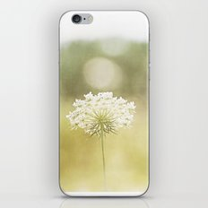 Queen Anne's Lace Nature Photography, Pale Yellow Floral Photography iPhone & iPod Skin