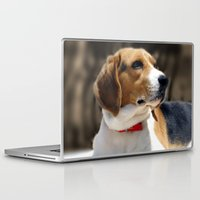 beagle Laptop & iPad Skins featuring Beagle by Artistically Home
