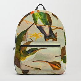 Translate Album de aves amazonicas - Emil August Göldi - 1900 Colorful Hummingbirds Backpack