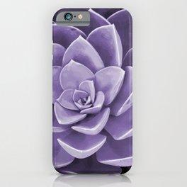 succulent Blossom violet color iPhone Case