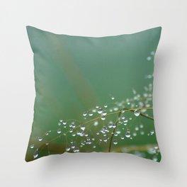 Morning dewgrass Throw Pillow