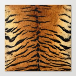 Faux Siberian Tiger Skin Design Canvas Print