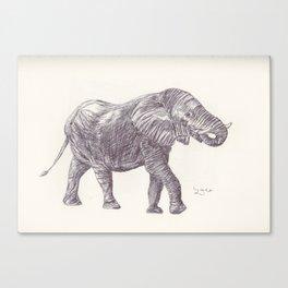 BALLPEN ELEPHANT 14 Canvas Print