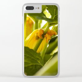 Zuchini Blossom Photography Print Clear iPhone Case