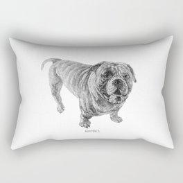 Bully_Iron Rectangular Pillow