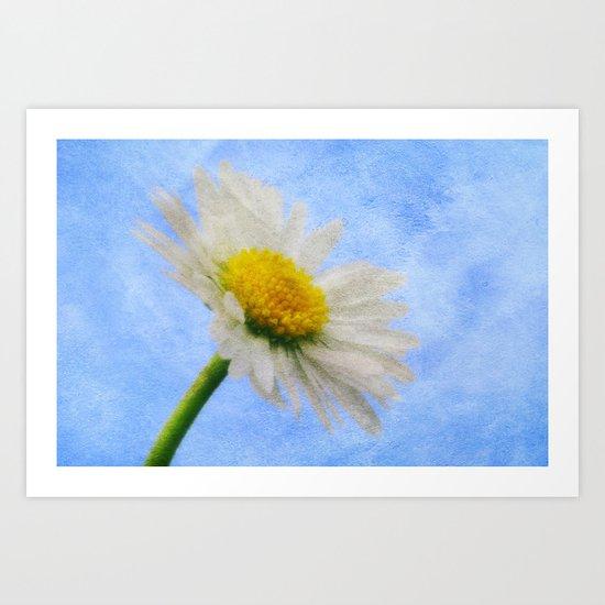 Daisy Texture 2 Art Print