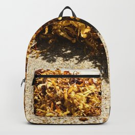 Washed Up Backpack