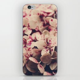 hydrangea - pink freckles iPhone Skin