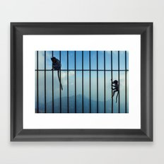India - Monkey bars Framed Art Print