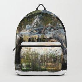 AC Cobra Backpack