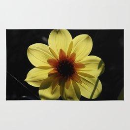 Yellow wind rose Rug