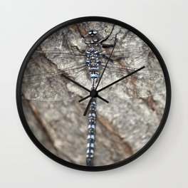 blue dragonfly on wood Wall Clock