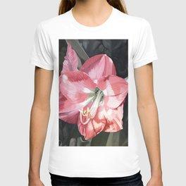 Pink Amaryllis Watercolor Botanical Garden Flower Painting Nature Art T-shirt
