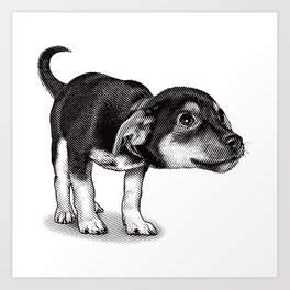 Cute cautious puppy wagging it's tail. Art Print