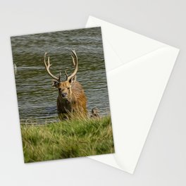 Cooled Off Stationery Cards