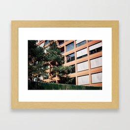 Beautiful Berliner buildings  Framed Art Print