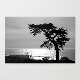 Beachscape No.2 Canvas Print