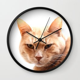 Red cat watching Wall Clock