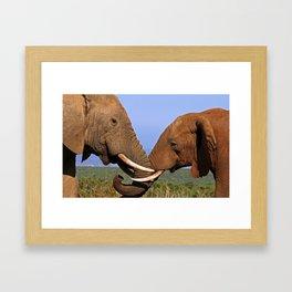 Friendship - Africa wildlife Framed Art Print