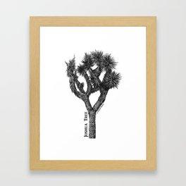 Joshua Tree Burns Canyon by CREYES Framed Art Print