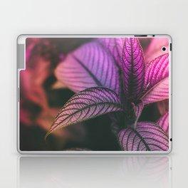 Violet Ladder Laptop & iPad Skin