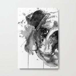 Black And White Half Faced English Bulldog Metal Print