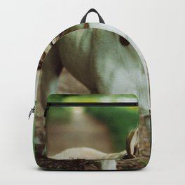 Fetch (Color) Backpack