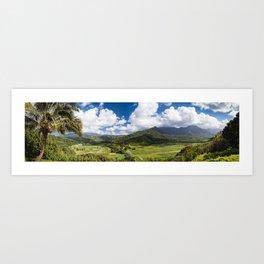 Panoramic photograph of Hanalei Valley's taro fields in Kauai, Hawaii Art Print