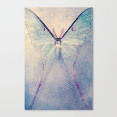 Miss Arctias Canvas Print