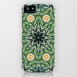 Succulent Splendor Two iPhone Case