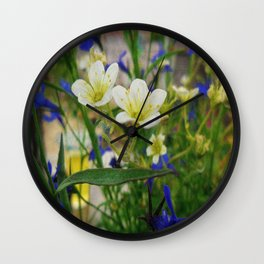 An insects eye view. Wall Clock