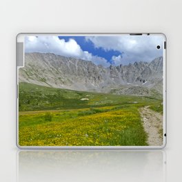Mayflower Gulch brimming with wildflowers Laptop & iPad Skin