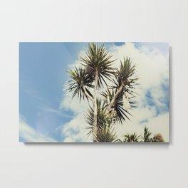 Tilt and Shift Penzance Palm tree Metal Print