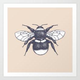 Sketched Bumblebee on Almond Art Print