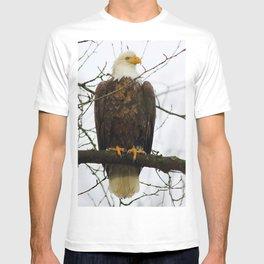 Bold Eagle T-shirt