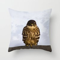 merlin Throw Pillows featuring Merlin Falcon by Photography By MsJudi